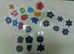 λουλούδια και σκιές